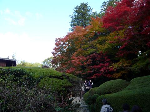 紅葉がキレイでした